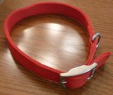 New Top Paw Red Dog Collar in Aurora, Illinois