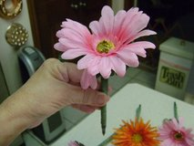 """Disappearing Pens?  Solve The Problem With Silk """"Flower Pens"""" in Houston, Texas"""
